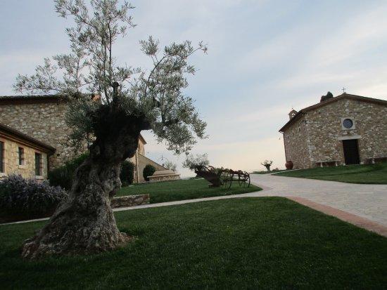 Bilde fra Serre di Rapolano