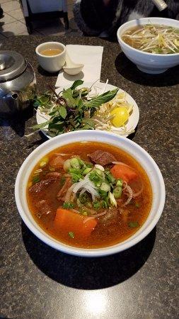 Nguyen Hoang Restaurant: Hu Tieu Bo Kho (beef stew with rice noodle)