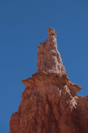Closeup of Queen Victoria Hoodoo in Bryce Canyon - Picture