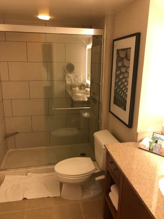 Hilton Chicago/Magnificent Mile Suites: photo2.jpg