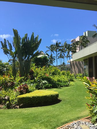 Marriott's Kaua'i Beach Club: photo1.jpg