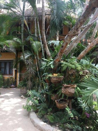 Holbox Hotel Mawimbi: photo2.jpg
