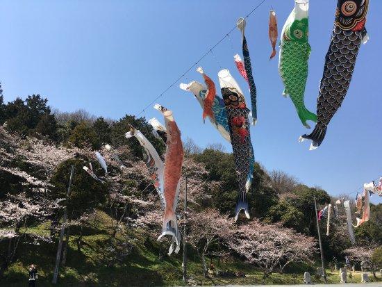 Okayama Prefecture, Japan: photo2.jpg