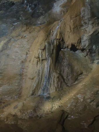 達洛尼加照片