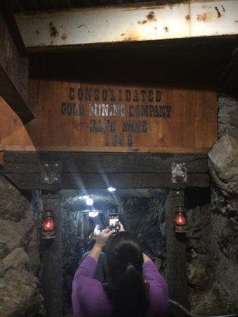 ดาห์โลนีกา, จอร์เจีย: Gold Mine Tour