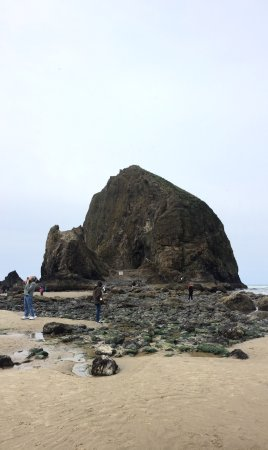 Haystack Rock Cannon Beach Low Tide