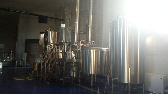 Wayward Owl Brewing Company Tasting Room