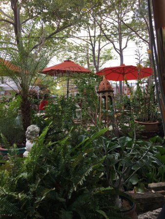 Wilton Manors, FL: The outdoor area