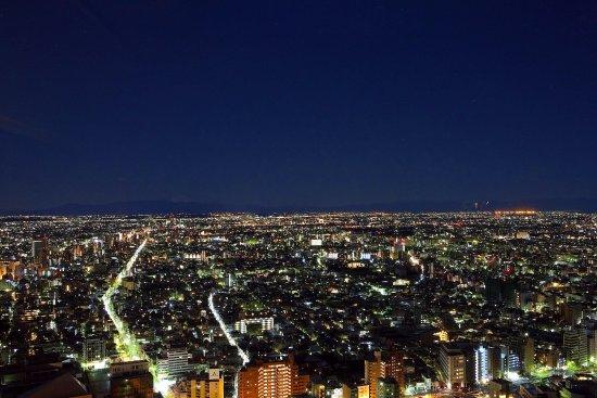 東京凱悅花園酒店照片