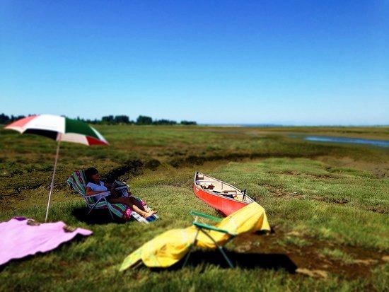 Surrey, Canada: Mud bay access