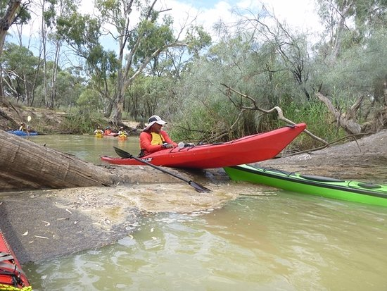 Canoe the Riverland: had some tricky bits