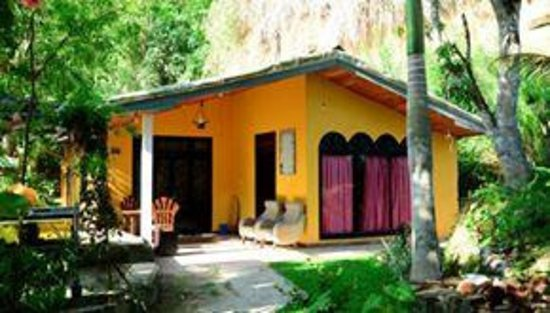 Amarasinghe Guest House: The terrace is a great place to hang out