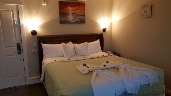 Starfish Manor Oceanfront Hotel: It's the special touches that make all the difference!