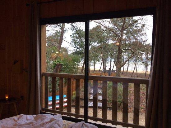 picture of la cabane au bord du lac biscarrosse tripadvisor. Black Bedroom Furniture Sets. Home Design Ideas