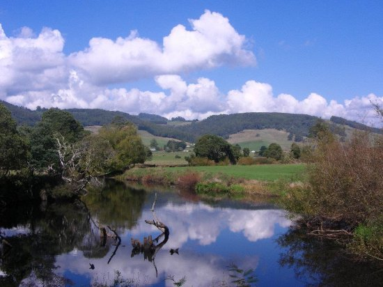 Gunns Plains, Αυστραλία: beautiful view of the surrounding area of the wildlife park