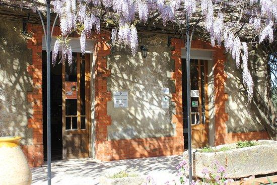Saint-Victor-la-Coste, Francja: Caveau de dégustation et de vente