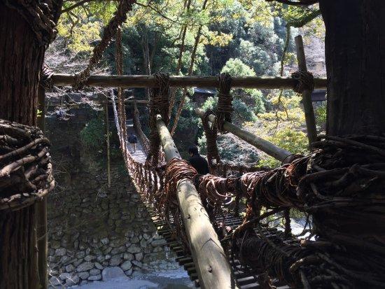 Iya Kazura Bridge : かずら橋