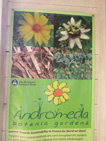 Bathsheba, Barbados: Garden sign