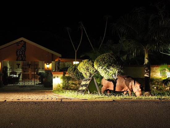 Elephant Coast Guest House: Night visitor into our garden