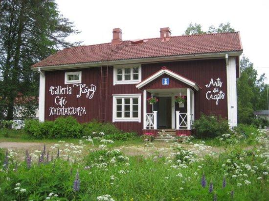Aanekoski, Finlandia: Gallery Käpy, near by Konnevesi center.