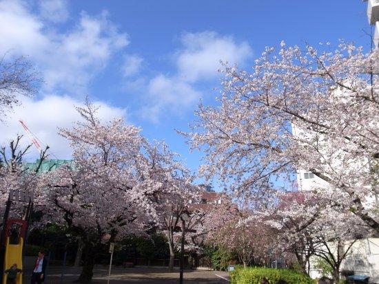 Mikawadai Park