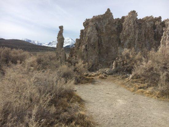 Lee Vining, كاليفورنيا: Beautiful high Sierra background