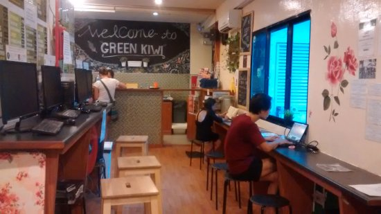 The Green Kiwi Backpacker Hostel