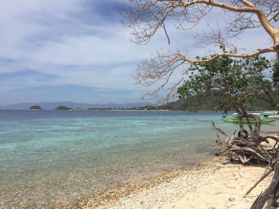 Banana Island Photo