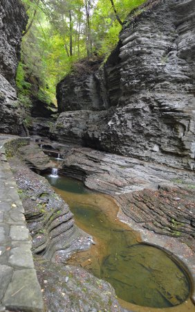 Photo of Park Watkins Glen State Park at 14 # Route 14, Watkins Glen, NY 14891, United States