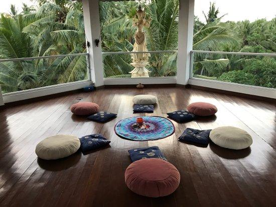 White Lotus Yoga & Meditation Centre Picture