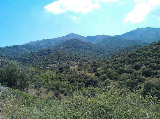 de bergen van eftalou