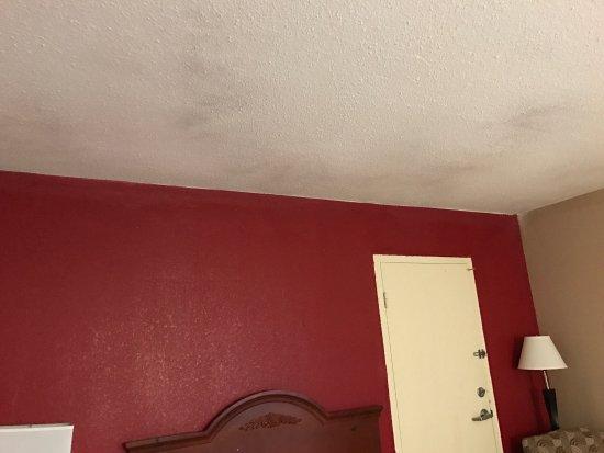 Red Roof Inn North Little Rock: photo3.jpg
