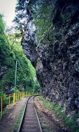 Krasnodar Krai, Rusia: Железная дорога,по которой ходит горный поезд