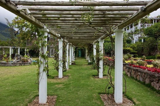 The Vine Gardens - a por venue for events - weddings and other ...
