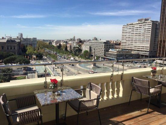 Gran Melia Fenix Updated 2018 Hotel Reviews Price