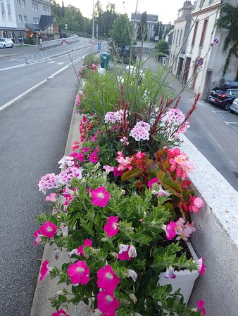 Escale Oceania Vannes: Flowers at the street oposite the hotel (Vannes)