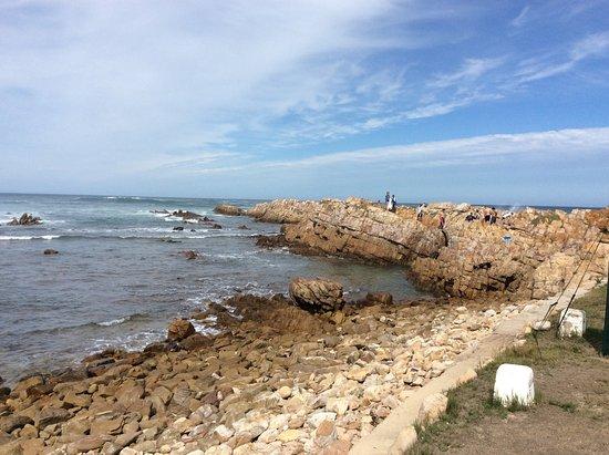 Buffalo Bay: Sea