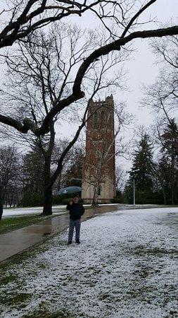 East Lansing, MI: Michigan State University