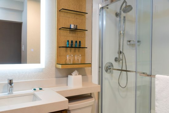 Delta By Marriott Grand Rapids Airport Stylish Gl Showers With Rain Shower Heads And Lighted