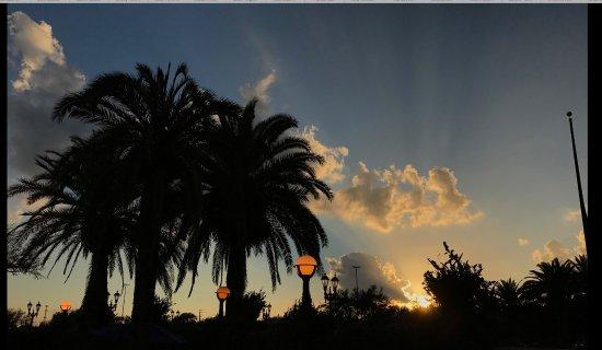 ذا فلوريدا هوتل آند كونفرنس سنتر: From the pool area