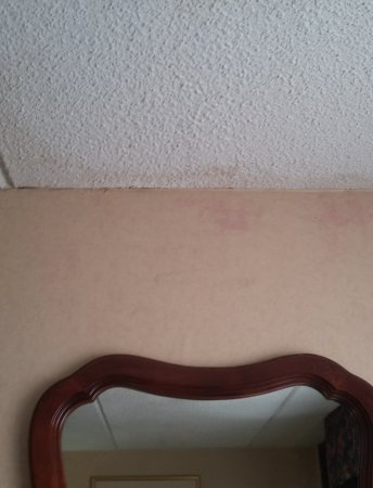 Baymont Inn & Suites Rock Hill: Pink mold and water damage in our room