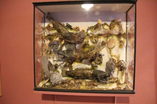 James Ensor House (James Ensorhuis) : Interesting!