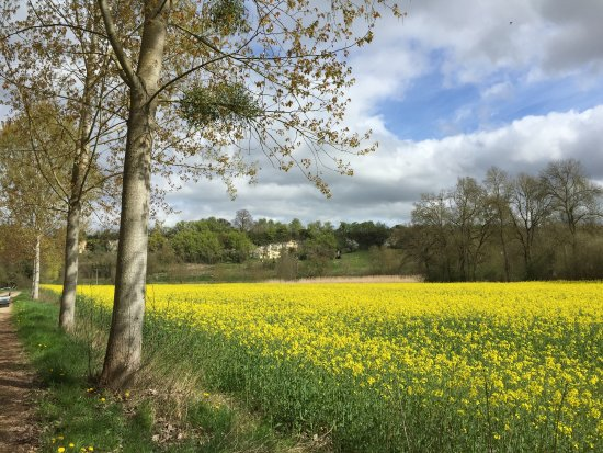 Luche-Pringe, France: Pour un petit footing à 500m de là