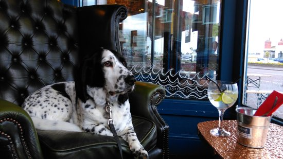 Bexhill-on-Sea, UK: A large G&T thanks...