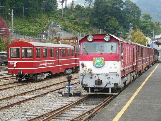 Shizuoka Prefecture, Japan: Ikawa Line train at Senzu.