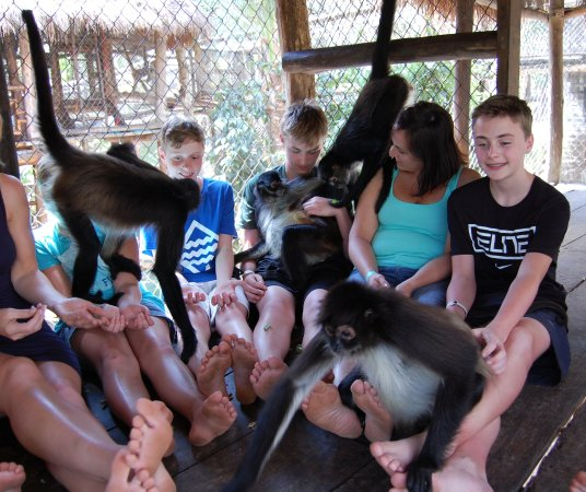 The Jungle Place - Tours: The kids are still talking about this weeks later!