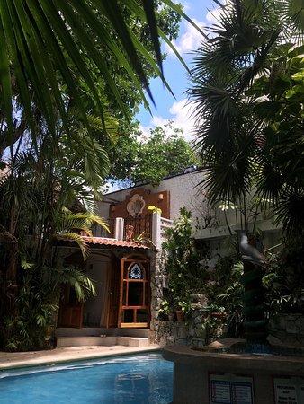 Eco-Hotel El Rey Del Caribe: Interior courtyard with pool