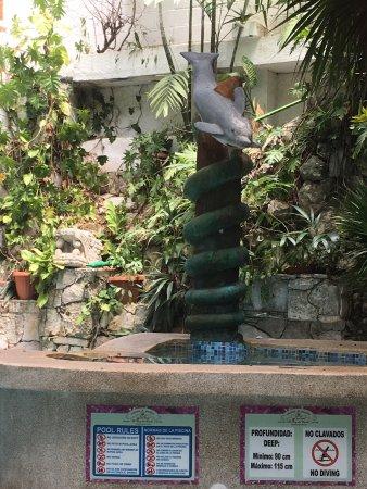 Eco-Hotel El Rey Del Caribe: Interior courtyard pool looking toward upstairs rooms