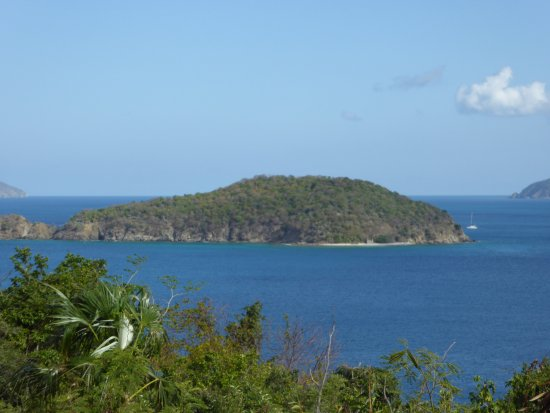 Whistling Cay : Overview