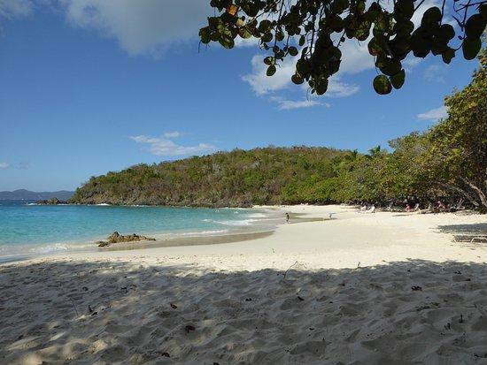 Канил-Бей, Сент-Джонс: Beach
